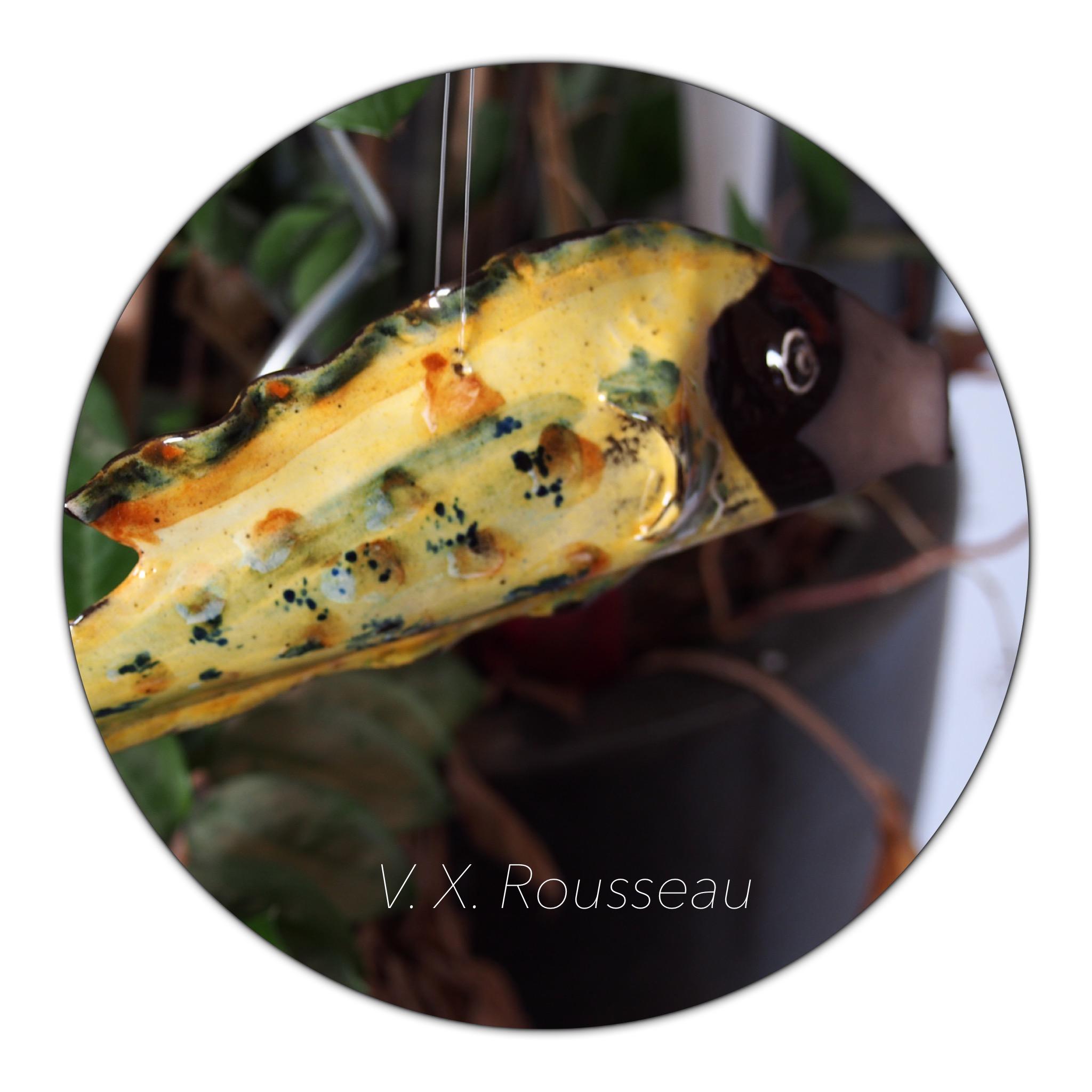 Rousseau V. X. poissons